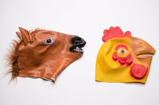 Horse & Chicken Head