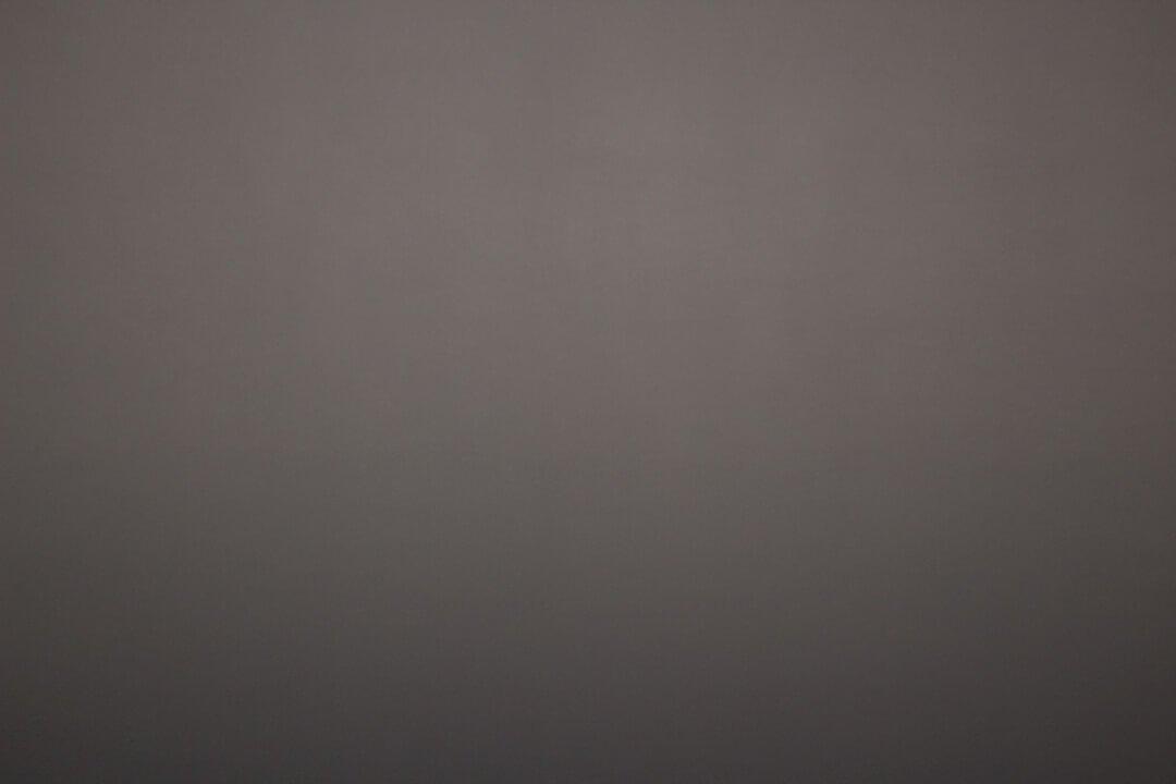 Pure Grey Backdrop